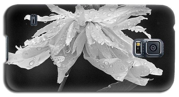 Raindrops Galaxy S5 Case by Inge Riis McDonald