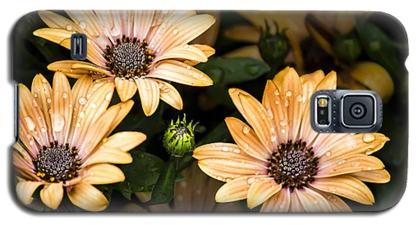 Galaxy S5 Case featuring the digital art Raindrops On Gerbera Daisies by Photographic Art by Russel Ray Photos