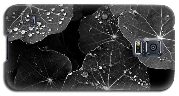 Raindrops On Nasturtium Galaxy S5 Case
