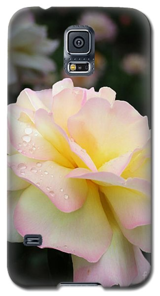 Galaxy S5 Case featuring the photograph Raindrops On Rose Petals by Barbara McMahon