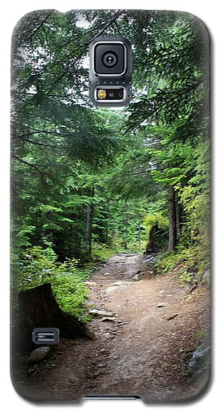Rainforest Trail - Cheakamus Lake Galaxy S5 Case
