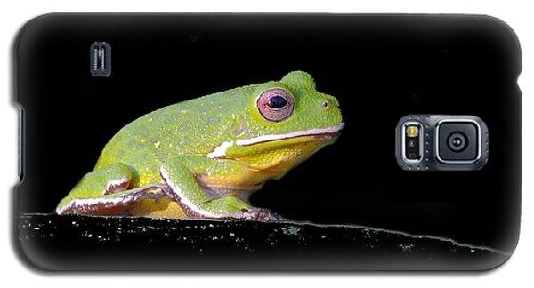 Galaxy S5 Case featuring the photograph Rainfrog Portrait by Myrna Bradshaw