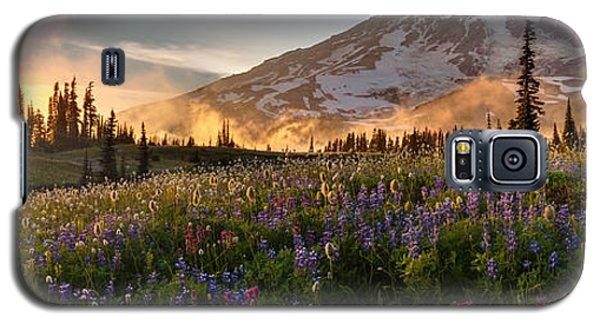 Rainier Golden Light Sunset Meadows Galaxy S5 Case