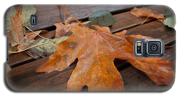 Galaxy S5 Case featuring the photograph Rainy Day Bench by Gwyn Newcombe