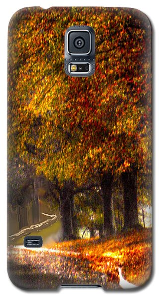 Galaxy S5 Case featuring the photograph Rainy Day Path by Lesa Fine