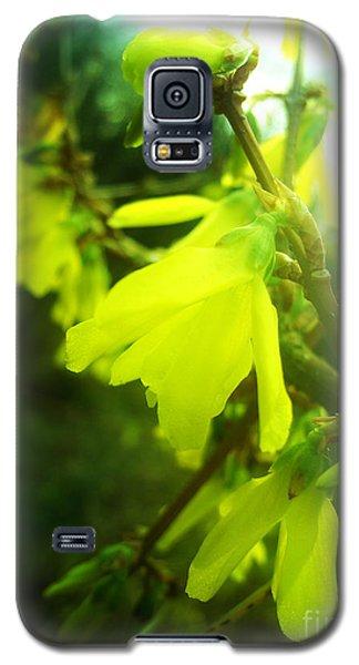 Rainy Dream Galaxy S5 Case by Nina Ficur Feenan