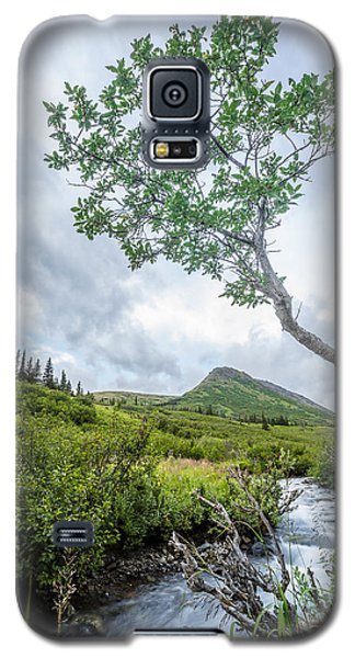 Rainy Evening On A Mountain Stream Galaxy S5 Case