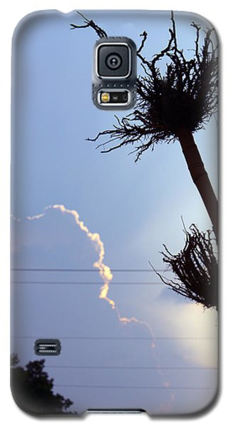 Raising Roots Galaxy S5 Case