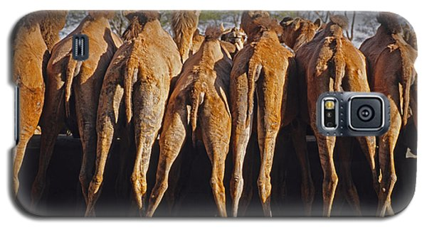 Galaxy S5 Case featuring the photograph Rajasthan Camel Station by Dennis Cox WorldViews