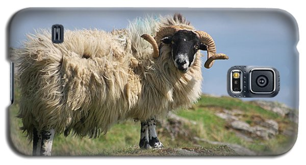 Galaxy S5 Case featuring the photograph Ram by Juergen Klust