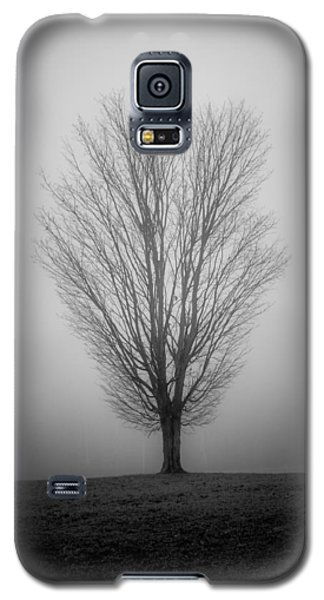 Ramblin' Tree Galaxy S5 Case