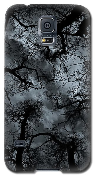 Random Thoughts - Nature Abstract Galaxy S5 Case