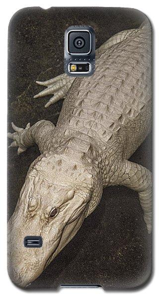 Rare White Alligator Galaxy S5 Case