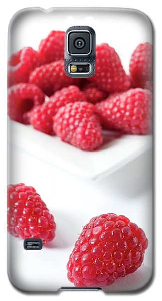 Raspberries Galaxy S5 Case
