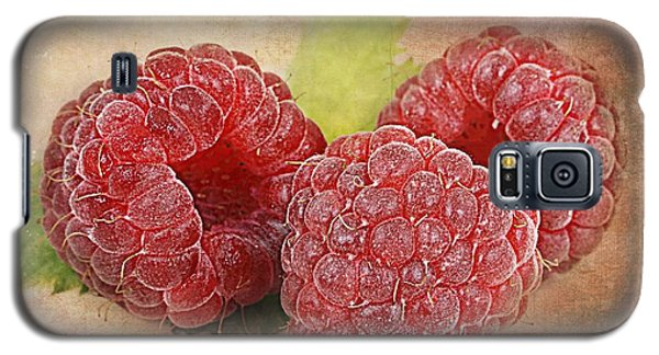 Raspberries  Galaxy S5 Case by Barbara Orenya
