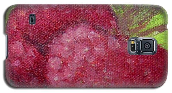 Raspberries Galaxy S5 Case