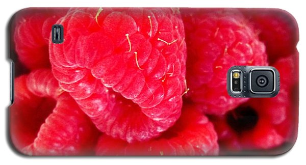 Galaxy S5 Case featuring the photograph Raspberry Delight by Margaret Newcomb
