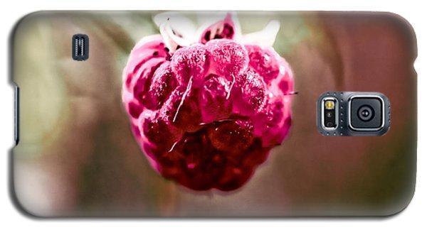 Raspberry Galaxy S5 Case by Leif Sohlman