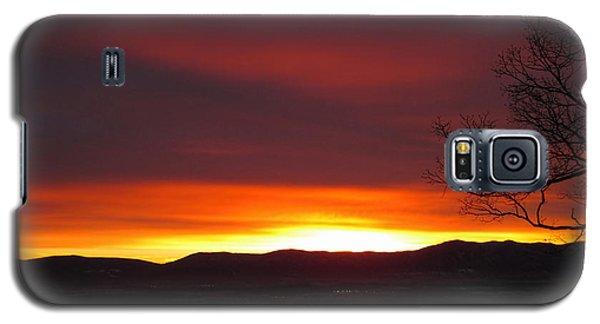 Galaxy S5 Case featuring the photograph Raspberry Swirl by Lara Ellis
