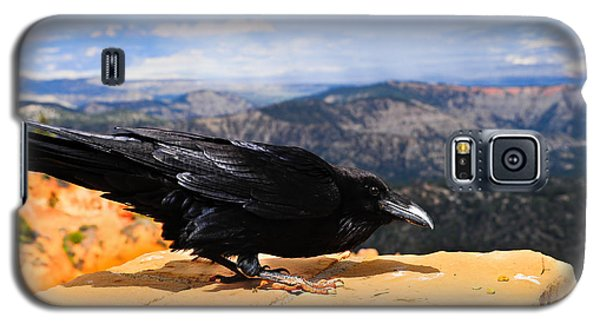 Raven Bryce Canyon Galaxy S5 Case by Donald Fink