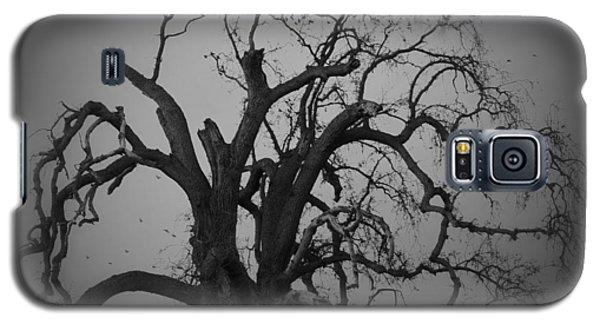 Raven Tree Galaxy S5 Case