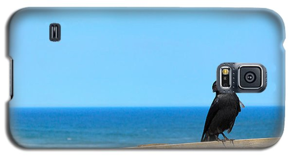 Galaxy S5 Case featuring the photograph Raven Watching by Peta Thames