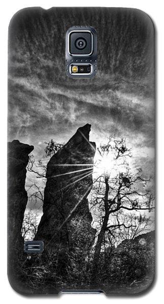 Rays Galaxy S5 Case