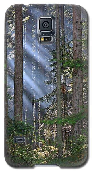Rays Galaxy S5 Case by Randy Hall