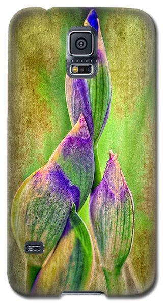 Reach For Spring Galaxy S5 Case