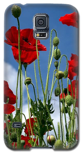 Galaxy S5 Case featuring the photograph Reach For The Sky by Baggieoldboy