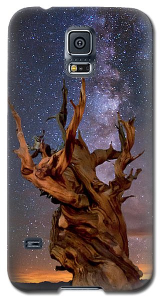 Reach For The Stars Galaxy S5 Case