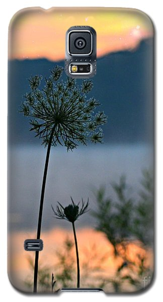 Galaxy S5 Case featuring the photograph Reach For Your Star by Lila Fisher-Wenzel