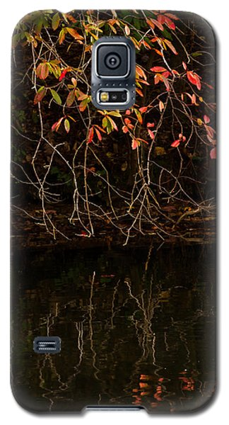 Galaxy S5 Case featuring the photograph Reaching Out by Haren Images- Kriss Haren