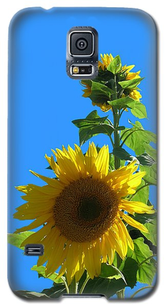 Reaching To The Sky Galaxy S5 Case by Bonnie Muir