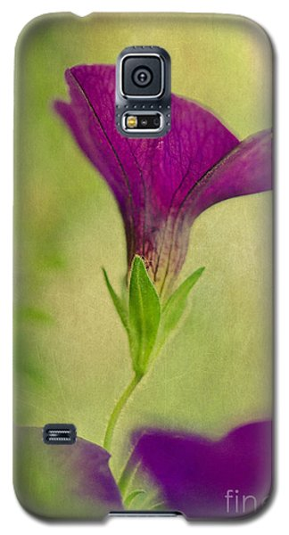 Reaching Toward The Heavens Galaxy S5 Case by MaryJane Armstrong