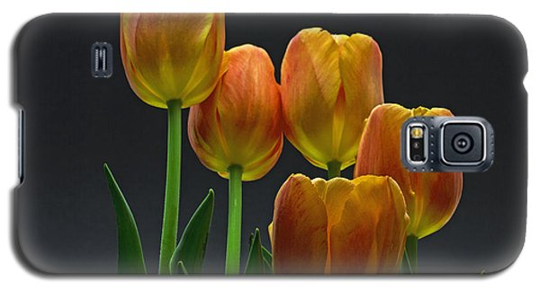 Galaxy S5 Case featuring the photograph Reaching Up by Robert Pilkington