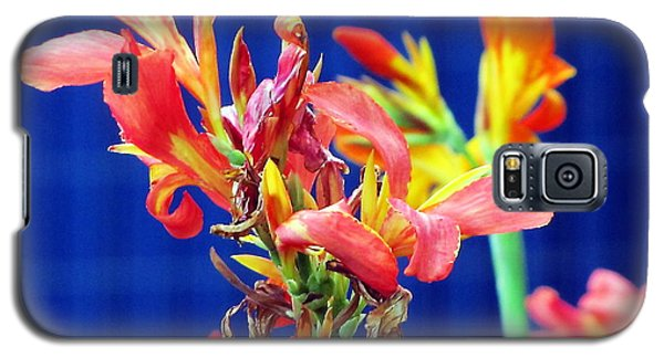 Galaxy S5 Case featuring the photograph Read And Blue by Yury Bashkin