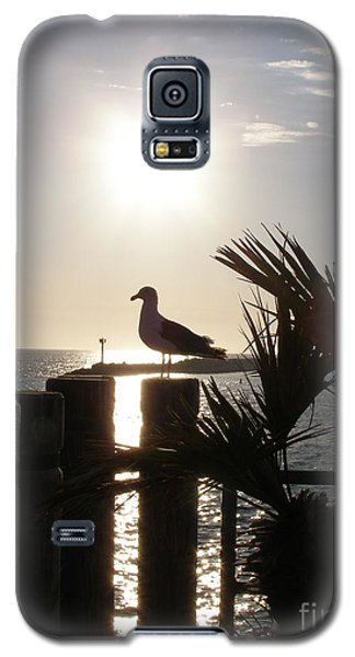 Galaxy S5 Case featuring the photograph Ready For Sunset by Bev Conover