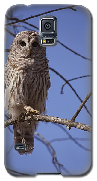 Ready For Takeoff Galaxy S5 Case by Eunice Gibb