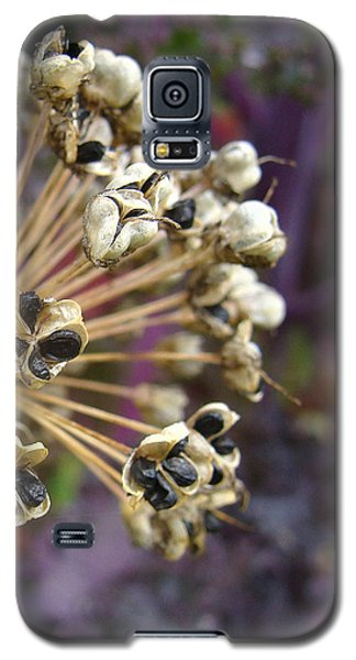 Galaxy S5 Case featuring the photograph Ready To Disperse by Cheryl Hoyle
