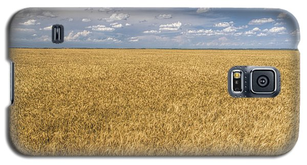 Galaxy S5 Case featuring the photograph Ready To Harvest by Rob Graham