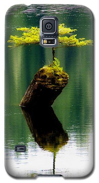 Rebirth  Galaxy S5 Case by Marilyn Wilson