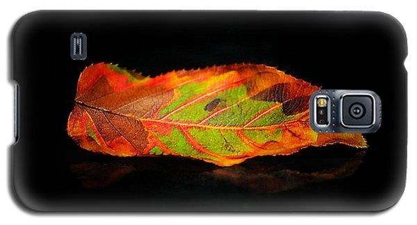 Reclining Leaf Galaxy S5 Case