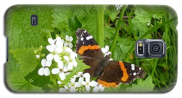Galaxy S5 Case featuring the photograph Red Admiral Butterfly by Lingfai Leung