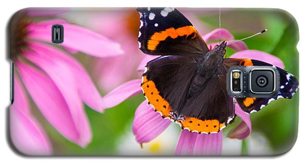 Red Admiral Butterfly Galaxy S5 Case by Patti Deters