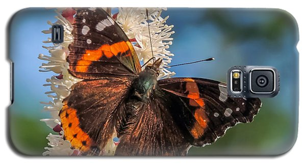 Red Admiral Galaxy S5 Case