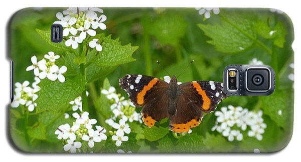 Galaxy S5 Case featuring the photograph Red Admirals by Lingfai Leung