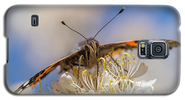 Red Admiral Butterfly On Plum Blossoms Galaxy S5 Case