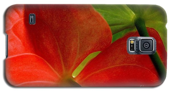 Red And Green Anthurium Galaxy S5 Case