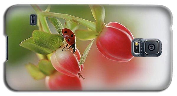 Ladybug Galaxy S5 Case - Red And Green by Ellen Van Deelen